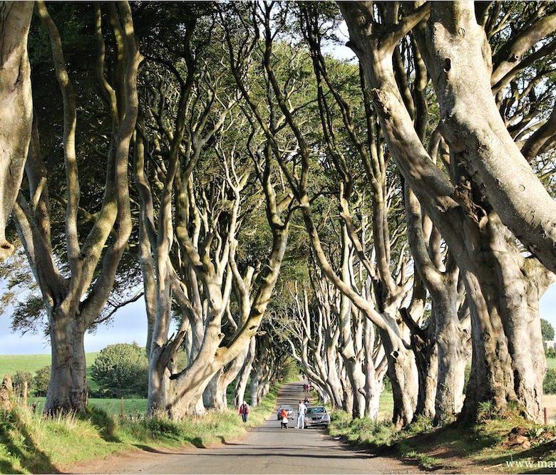 Film ambientati in Irlanda